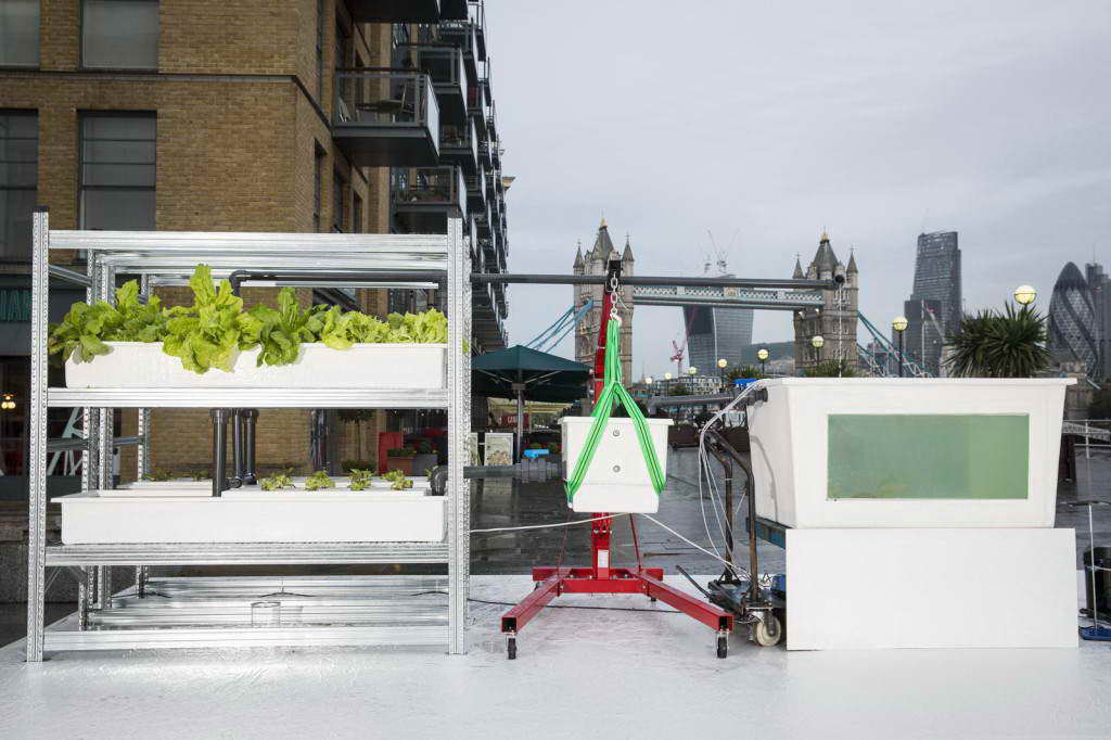 Hyundai unveil an emission-free fuel cell car that grows food, London, Britain - 21 Oct 2013
